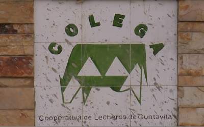 Los invitamos a revisar el video de la Cooperativa Colega, de Guatavita Colombia